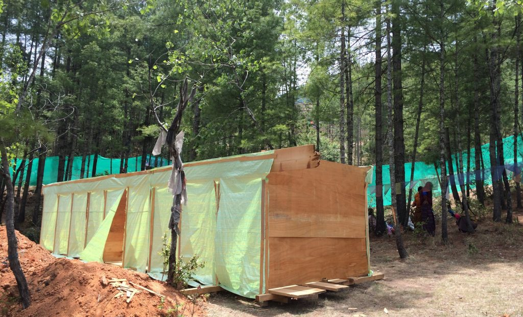 林の中の手作り仮設トイレは、なんだか可愛らしい佇まい。