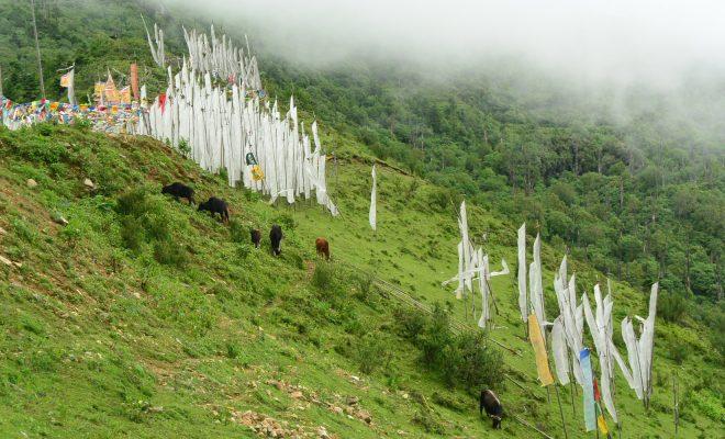 雨季、雲が立ち込め神秘的なチェレラ峠